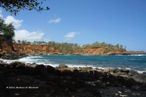 2015-05-11-bw-beacham
